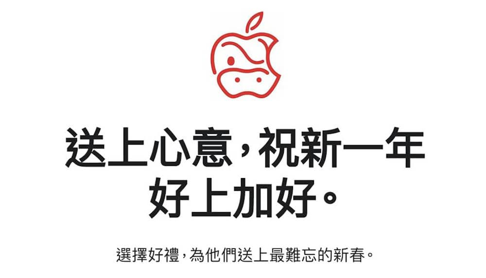 Apple AirPods Pro ox