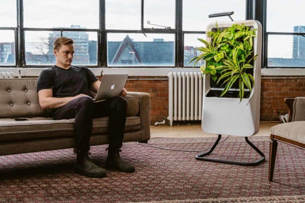 Respira virtual garden
